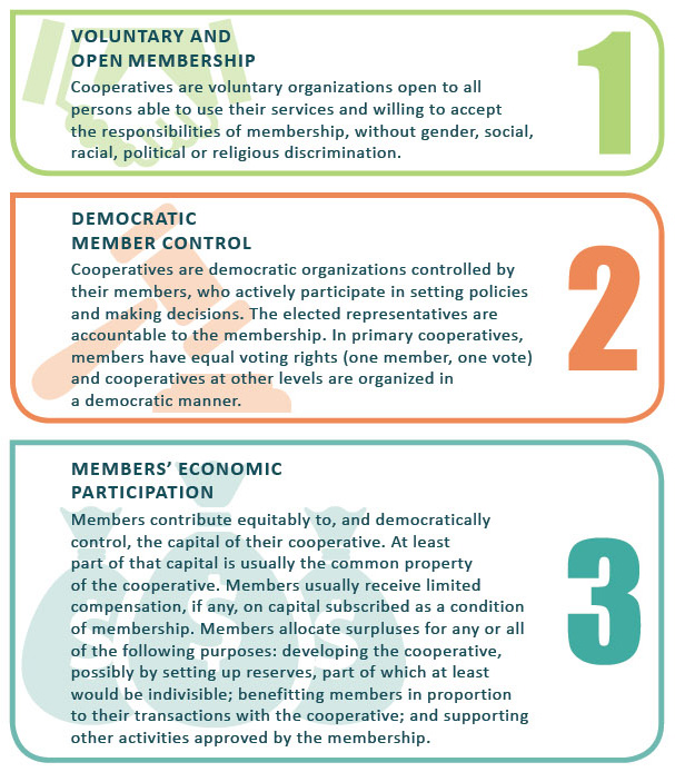 a study on cooperative principle Countries 6 financial co-operative model 7 malawi economy 8 how coops  can lead to economic growt –fincoop case study of malawi.