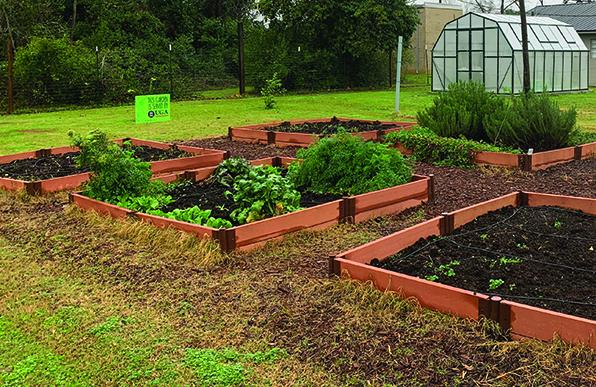 Calhoun County UGA greenhouse