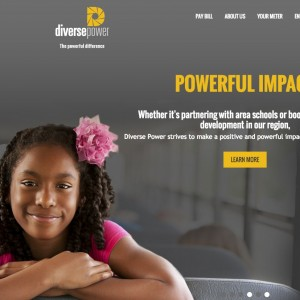 New-Diverse-Power-Website